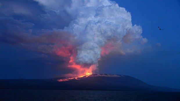 Wolf volcano erupting, at Isabela Island, Galapagos Islands, Ecuador, Monday, May 25, 2015